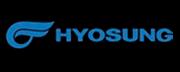 Hyosumg